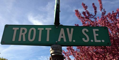 Trott-Avenue
