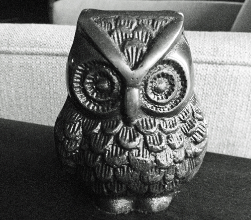 Owl-black-and-white