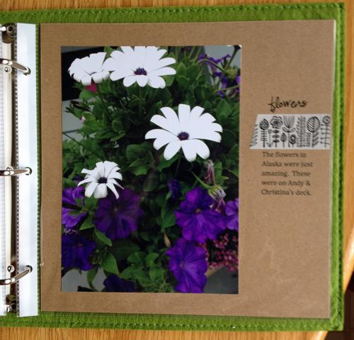 Alaska-flowers