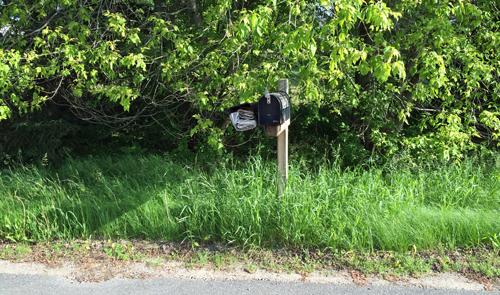 Mailbox-growth