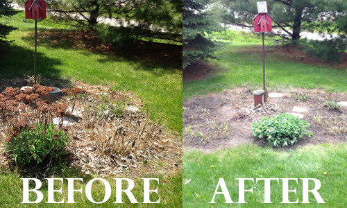 Garden-before-after