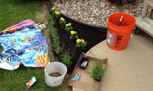 Planting-flowers